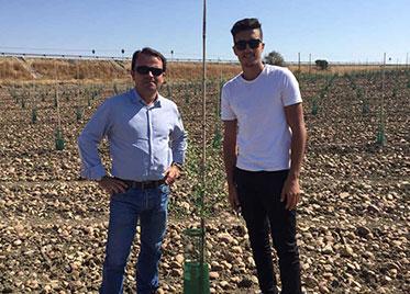 MC BIO – VISITA DE AGRICULTORES DE ARGELIA A NUEVAS PLANTACIONES DE OLIVOS
